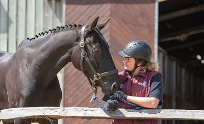 Equine team approved to deliver new programme