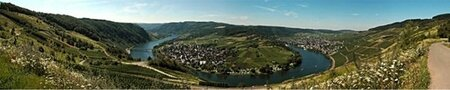 English wine students study tour, April 2013, Mosel Germany