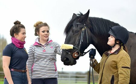 Plumpton College introduces industry leading course; 'Changing Lives Through Horses'