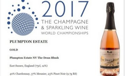 Plumpton Estate Wine Wins Gold