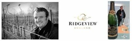 Wine Careers Talk - Matt Strugnell, Ridgeview