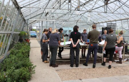 Horticulture Apprentices   Launch Their New Careers