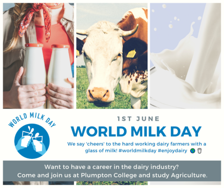 Raise a 'virtual' glass to our Dairy farmers on World Milk Day