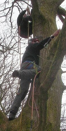 Tree Climbing and Aerial Rescue at Plumpton College